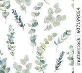 watercolor eucalyptus branches... | Shutterstock . vector #607199024