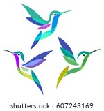 stylized birds   hummingbirds | Shutterstock .eps vector #607243169