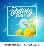inscription spring time. vector ... | Shutterstock .eps vector #607253879