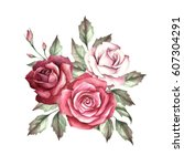 the image of a rose.hand draw... | Shutterstock . vector #607304291