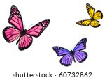 Stock photo monarch butterflies isolated on white flying towards center of frame 60732862