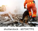 search and rescue forces search ... | Shutterstock . vector #607347791
