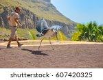 gran canaria  spain   march 10... | Shutterstock . vector #607420325