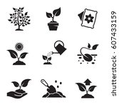 plant growing icons set. black... | Shutterstock .eps vector #607433159