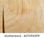 annual rings  growth ring | Shutterstock . vector #607454399