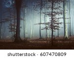 fairy tale light in foggy forest   Shutterstock . vector #607470809