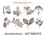vector collection of hand drawn ... | Shutterstock .eps vector #607488455