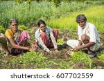 indian farmer with family... | Shutterstock . vector #607702559