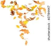 autumn oak leaves falling and... | Shutterstock . vector #60784447