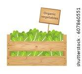 wooden boxes of lettuce.... | Shutterstock .eps vector #607860551