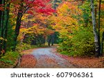 Colorful trees in Killarney Park in fall time, Canada - stock photo