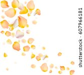 Stock vector rose petals vector background eps illustration yellow rose petals scattered on white 607966181