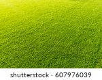 artificial turf with sunshine | Shutterstock . vector #607976039