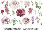 set elements of rose  peonies.... | Shutterstock . vector #608045831