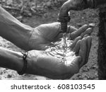 Small photo of Save Water, Save Life
