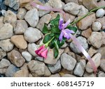 pink roses on the  pile rocks   ... | Shutterstock . vector #608145719