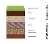 soil horizons are distinct... | Shutterstock .eps vector #608213459