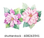 watercolor flowers illustration.... | Shutterstock . vector #608263541