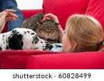 Stock photo lying on red sofa young woman with cat and dalmatian dog 60828499