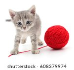 Stock photo kitten with ball of yarn isolated on white background 608379974