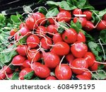 Bunch Red Radishes In The Market