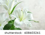 beautiful white lilies on light ... | Shutterstock . vector #608603261