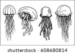 set of contours of jellyfishes   Shutterstock .eps vector #608680814