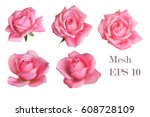Stock vector  mesh pink roses 608728109