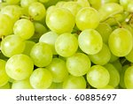 green grape closeup - stock photo