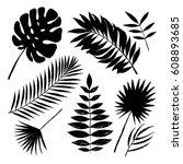 summer black silhouette... | Shutterstock .eps vector #608893685