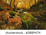 Autumn At Stockghyll In The...