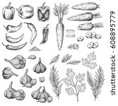 hand drawn sketch food set.... | Shutterstock .eps vector #608895779