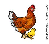 Hand Drawn Brown Hen And Littl...