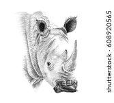 portrait of rhino drawn by hand ... | Shutterstock . vector #608920565