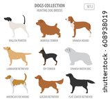 hunting dog breeds collection... | Shutterstock .eps vector #608938019