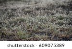 abstract natural background.... | Shutterstock . vector #609075389