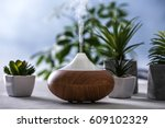 aroma oil diffuser and...   Shutterstock . vector #609102329