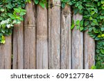 bamboo panels with ivy growing... | Shutterstock . vector #609127784