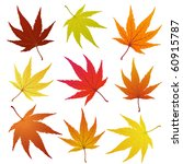 autumn maple leaves set. ... | Shutterstock .eps vector #60915787