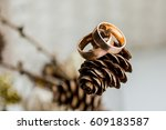 Wedding Rings On The Pine Cone...