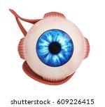human eye extraocular muscles....   Shutterstock . vector #609226415