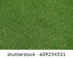 green grass background texture. | Shutterstock . vector #609254531