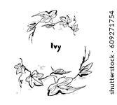 ivy floral border frame. hand... | Shutterstock .eps vector #609271754