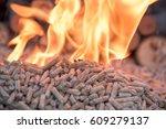 Fir Wooden Biomass In Flames ...