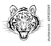 tiger head on white background | Shutterstock .eps vector #609302069