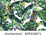 parrots  banana leaves  jungle... | Shutterstock .eps vector #609318671