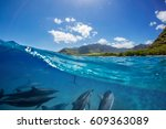 pod of dolphins traveling along ... | Shutterstock . vector #609363089