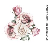 Stock photo watercolor flowers floral illustration pink rose branch of flowers isolated on white background 609382829