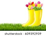 gumboot with green grass and... | Shutterstock . vector #609392939