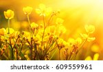 field of spring flowers and... | Shutterstock . vector #609559961